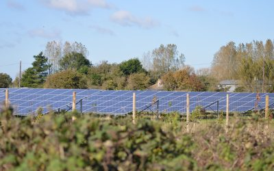 Ferry Farm Community Solar